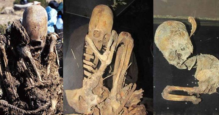 Investigadores han encontrado recientemente varios esqueletos en Bolivia, sin embargo dos de ellos son de gran interés ya que presentan una anómala deformación craneal: cráneos impresionantemente gran