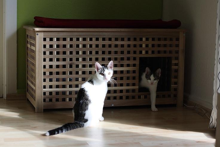 Versteck für die Katzentoilette - Öffnung kann man leicht selber sägen, der Geruch staut sich nicht, Licht kann rein und sieht auch noch super aus
