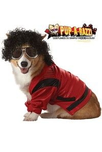 California Costumes Pop King Pet Costume - Pop King Pet Costume includes black curly wig, novelty gl