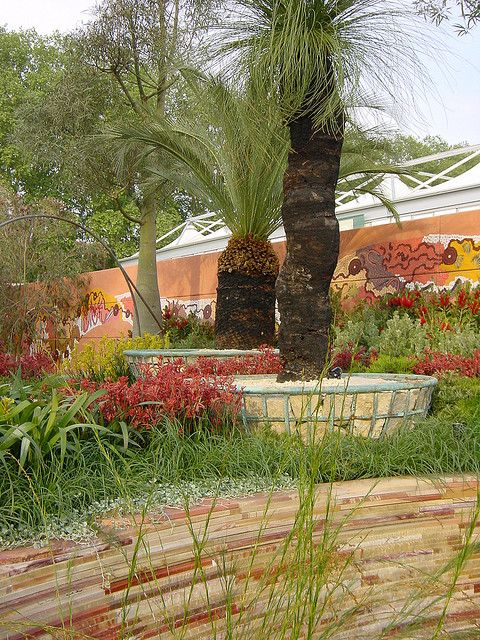Australian Garden Jamie Durie Xanthorrhoea