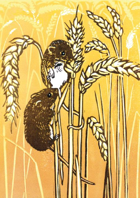 'Harvest Mice' By Printmaker Lynda Durrant. Blank Art Cards By Green Pebble…