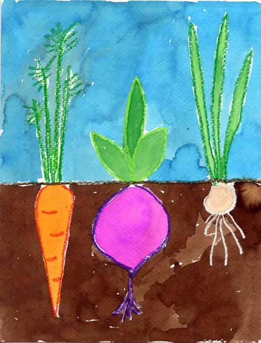 Here's a vegetable painting idea I found over at Artsonia.com. It's great way to make a pretty painting and learn about root systems as well.