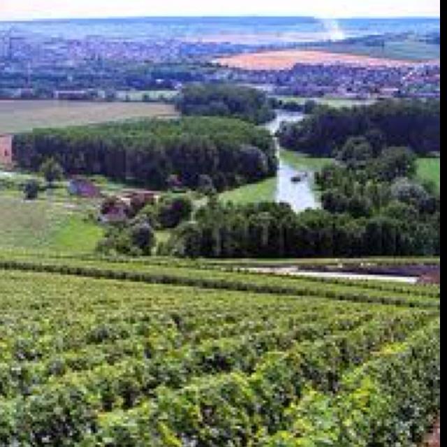 Eperney, France where champagne grapes are grown: Vins De, Vin De