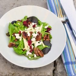 Goat cheese, Goats and Pecans on Pinterest