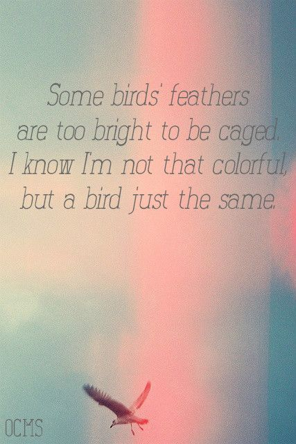 Take Em Away - Old Crow Medicine Show - Folk Lyrics
