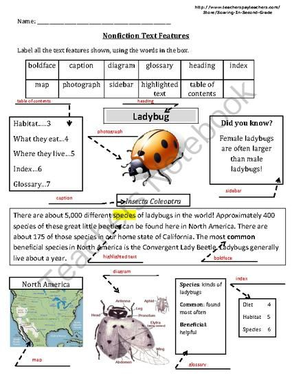 Printables Nonfiction Text Features Worksheets 1000 ideas about text features worksheet on pinterest nonfiction assessment ladybug from soaring in second grade teachersnotebook com