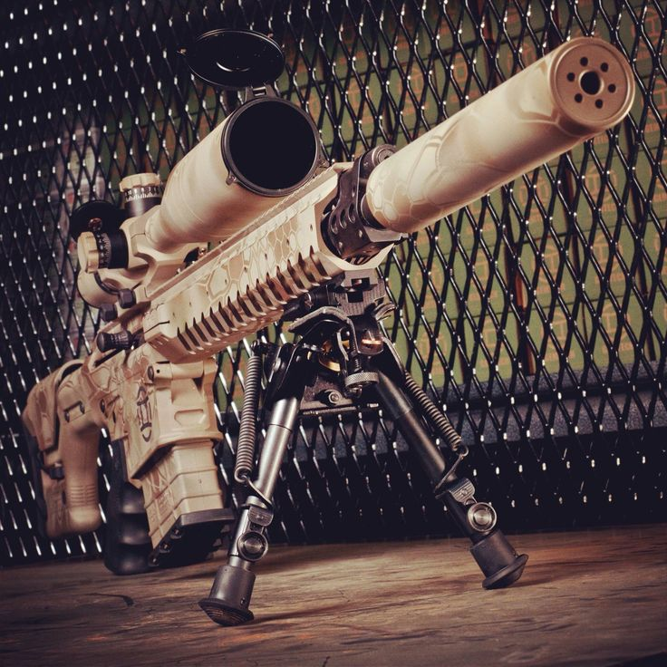 NEMO Omen AR-style rifle in .300 Winchester Magnum. If that wasn't enough, it takes a suppressor. And it's FDE.
