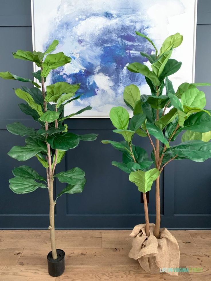 Die besten Faux Fiddle Leaf Feigenbäume & Tipps   – Best of Life On Virginia Street Home Decor and Design
