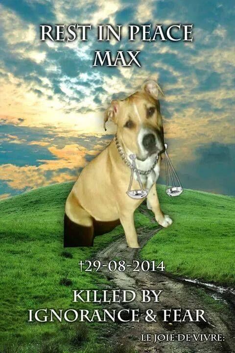 R.I.P.MAX 29-08-2014