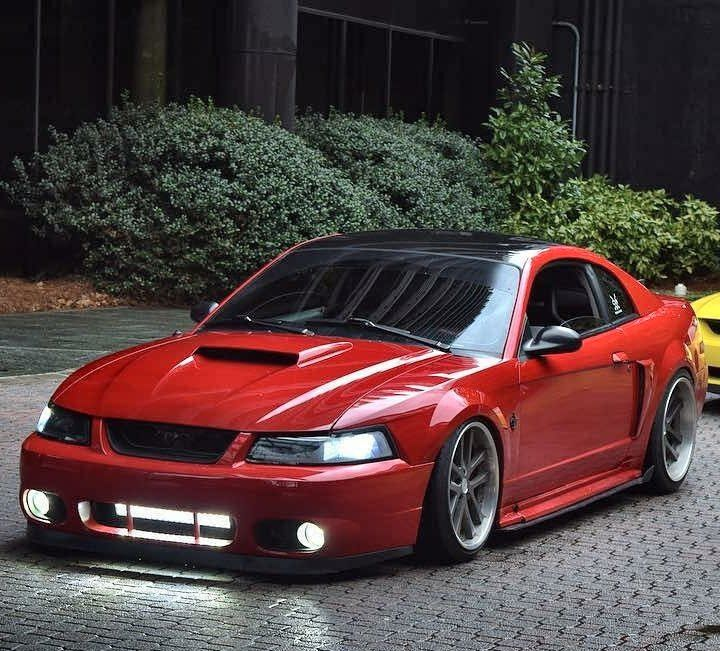 2002 Ford Mustang Image By Ray Wilkins On Mustangs