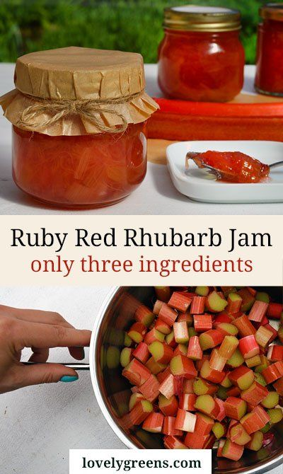 Ruby Red Rhubarb Jam Recipe-- I really like how easy this recipe sounds. Will be picking up some pectin soon as I have never heard of jam sugar. But I like the small amount, and very straight forward.