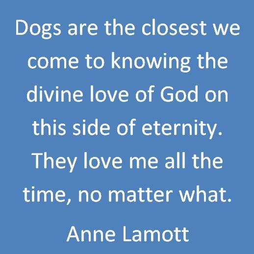 Persistence Motivational Quotes: Anne Lamott Quote Dogs God. I Love This! I Have Always