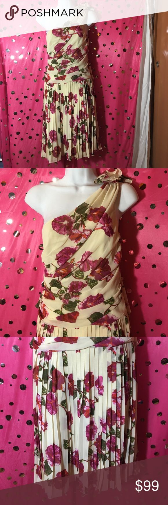 Size 4 - Make me an Offer Alberta Ferretti  Size 4 Floral Dress with One strap  Tie back Size zipper  New without tags  Cream/Beige Alberta Ferretti Dresses Midi