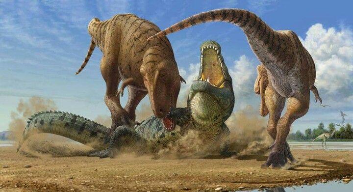 Tyrannosaurus Rex v Deinosuchus | Paleontology | Pinterest ...