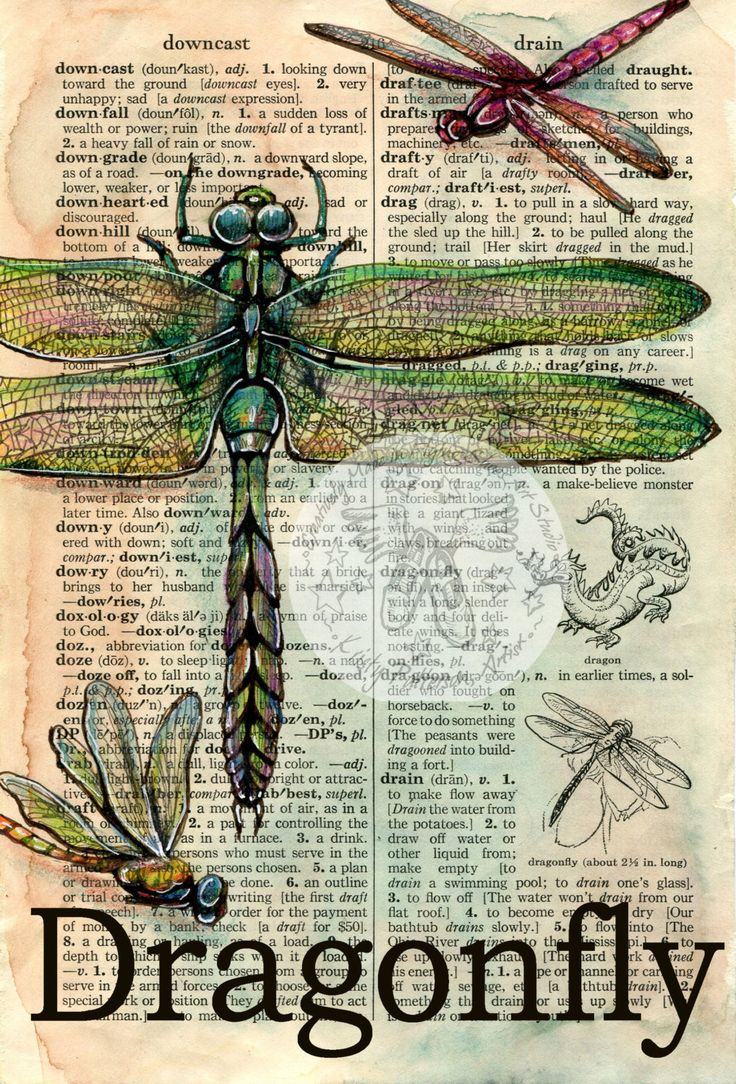 PRINT Dragonfly Mixed Media Drawing on Distressed by flyingshoes