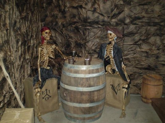 I would like to do a Pirates of the Caribbean themed decorations one year.