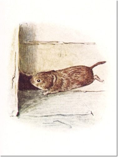 The Tale of Johnny Town-Mouse, 1918 - Timmy Willie Rushed Along the Skirting Board Till He Came to a Little Hole