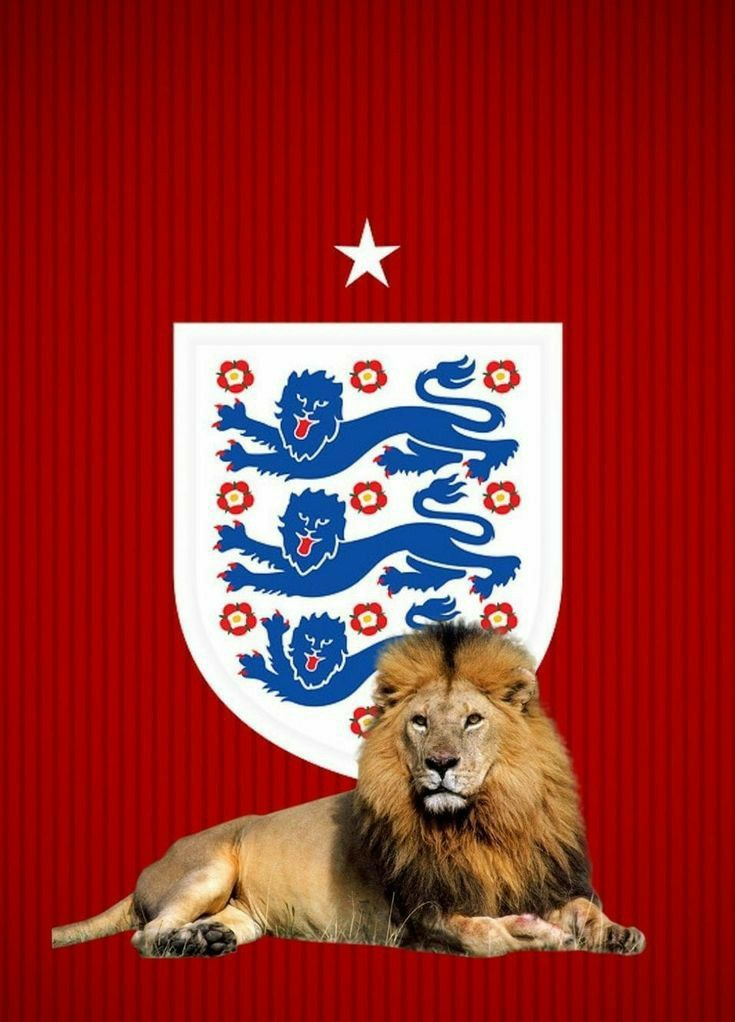 England Football Team Crest Lion Phone Wallpaper England Football Team England Football England Flag