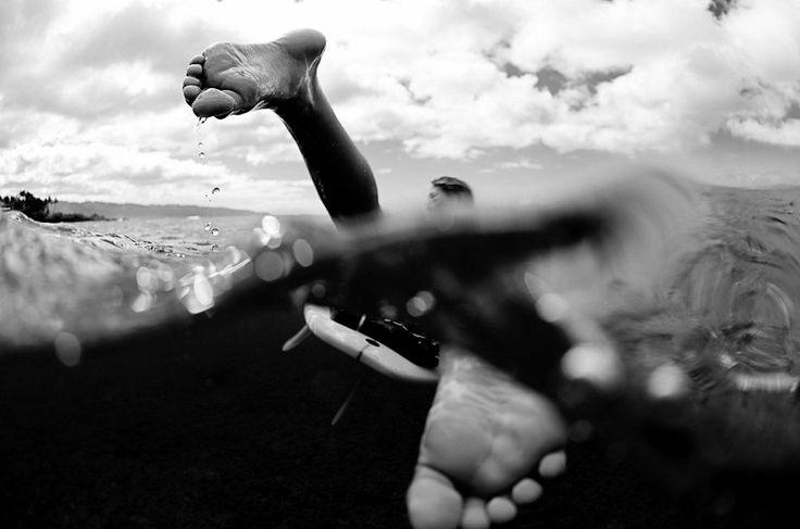 Photo by Morgan Maassen