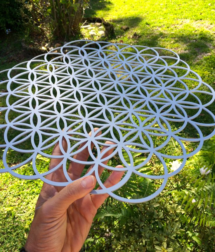 A well know pattern – the Flower of Life – has been found in many historical sites around the world. It is the fundamental pattern of the fabric of the Universe. http://flowinnature.com.au/products/geometry-of-flow-flower-of-life/