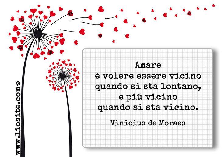 481. Amare è volere essere vicino quando si sta lontano, e più vicino quando si sta vicino. Vinicius de Moraes