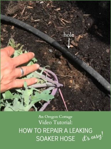 16 Best Images About Irrigation On Pinterest Gardens Raised Beds And The Shorts