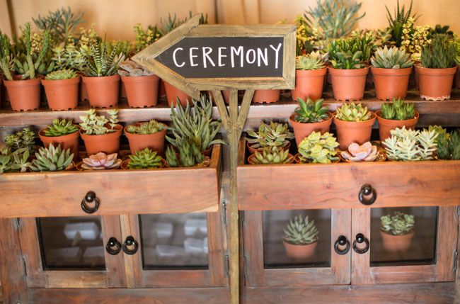 succulent garden with chalkboard ceremony sign