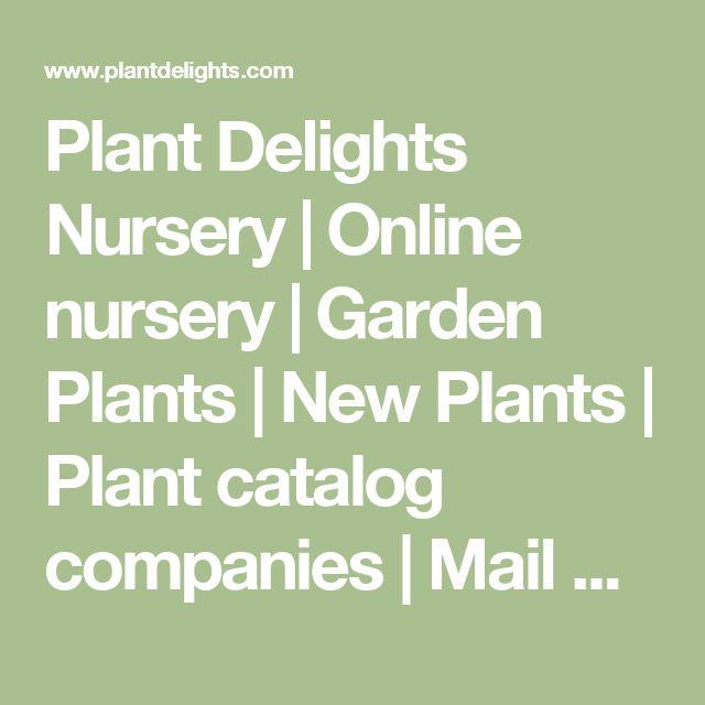 Plant Delights Nursery | Online nursery | Garden Plants | New Plants  | Plant catalog companies | Mail Order Plants