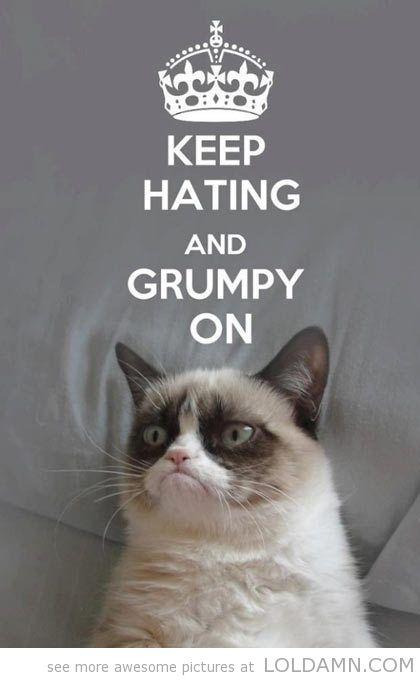 grumpy cat pictures   funny grumpy cat - LOL, DAMN!