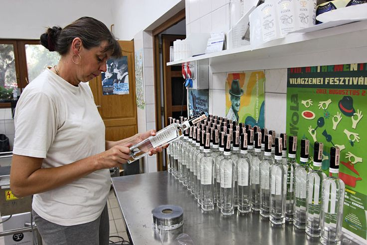 Labeling bottles of Hungarian Palinka, a high alcohol content fruit cordial made from local plums in Panyola, Hungary
