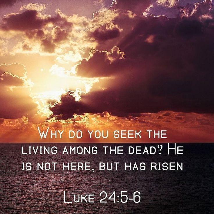 Happy Easter! How blessed are we to have Jesus Our Savior. His love conquers all things! #liturgicalliving #catholicmom http://ift.tt/1L6PBx3