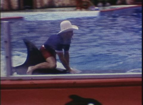 The Victor Black Collection - Seven Seas Marine Life Park, Part II (1973)