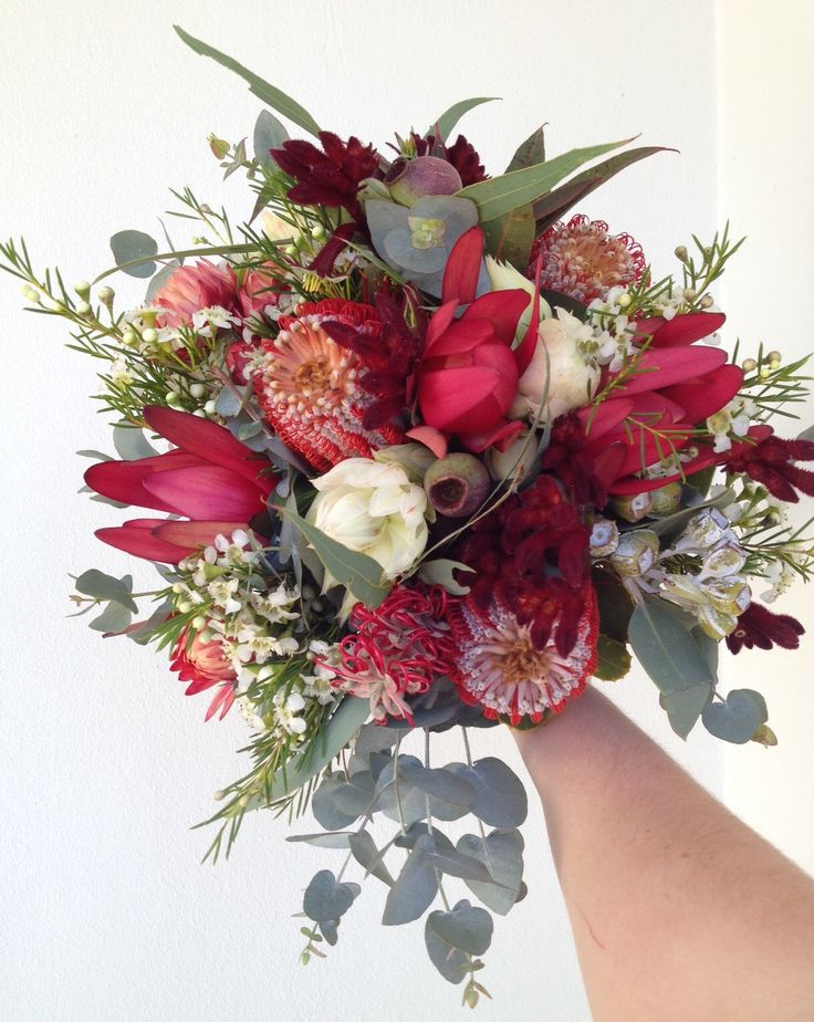 Bridal wedding bouquet of Australia native flowers - blushing bride, Geraldton wax, leucadendrons, grevillea, gum, coccinea, tetra nuts.
