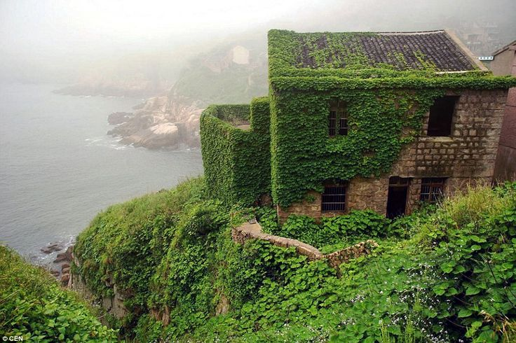 Shengsi Islands: This coastal village on Shengshan Island is covered in greenery - a stark contrast to the metropolitan Chinese mainland