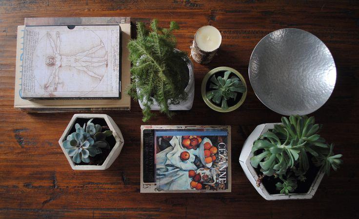 coffee table style. succulents. books. davinci. cezanne.