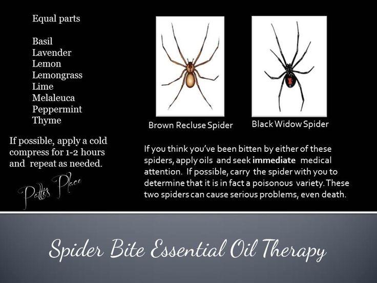 Patti S Place Spider Bite Essential Oil Therapy Eos For