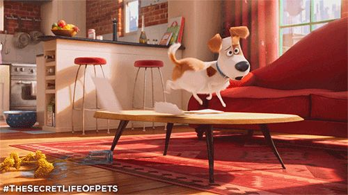 The Secret Life Of Pets | Trailer & Movie Site | In theaters, RealD 3D, and IMAX 3D July 8