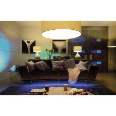 Philips Hue Lamp Lux Startpakket E27 2 stuks, met Hue bridge|aan tafel|herfst - Vivolanda