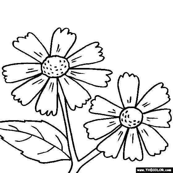 118 best Coloring - Flowers images on Pinterest | Colouring pages ...