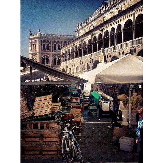 una mia foto, scattata 7 settimane fa e pubblicata in Instagram, è stata inserita nel blog #InstaPadova http://blog.gelocal.it/mattinopadova-instapadova/perche-questo-blog/  Il mercato in Piazza delle Erbe a Padova.