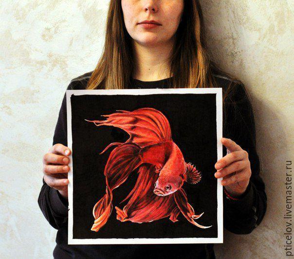 Купить Бойцовая рыбка, рисунок, акварель-акварельные карандаши - ярко-красный, рыба, аквариум, черный
