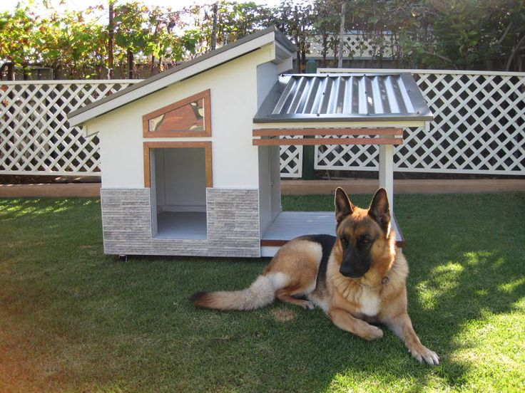 26 best Pets images on Pinterest | House dog, Doggies and Dogs Designer Dog House on designer toys, designer blankets, designer clothing, designer pools, designer cats, designer homes, designer dog doors, designer living rooms, designer gifts, designer apparel, designer flowers, designer dog rooms, designer closets, designer dog shoes, designer dog jewelry, designer dog gates, designer dog clothes, designer books, designer baby boutique, designer furniture,
