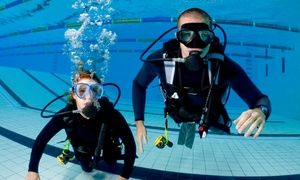 Groupon - One or Two Discover Scuba Diving Classes at Mountain Bay Scuba (Up to 52% Off) in Windsor Park. Groupon deal price: $19