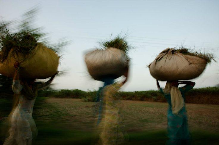 "John Stanmeyer ""Food Crisis"" - adfphoto"
