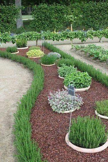Buried pots for herb garden.