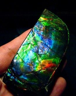 Ammolite - lots to learn - check out the article.  Crystals offer something for everyone