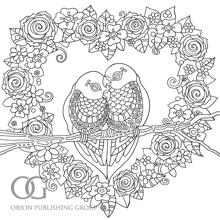 image result for adult colouring birds
