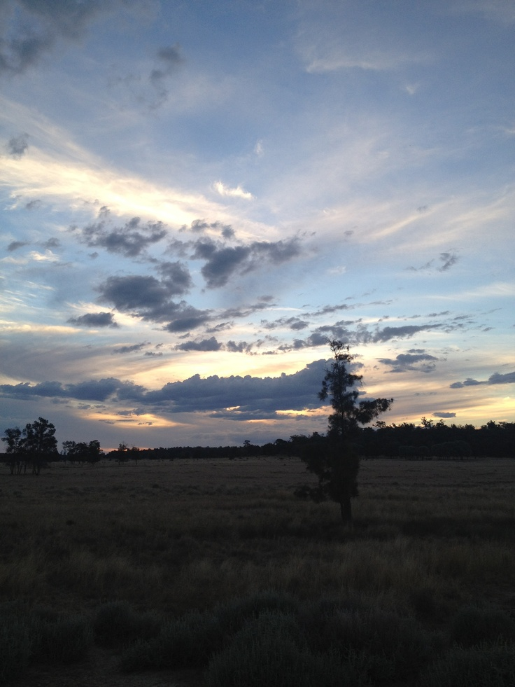 Country summer sunset