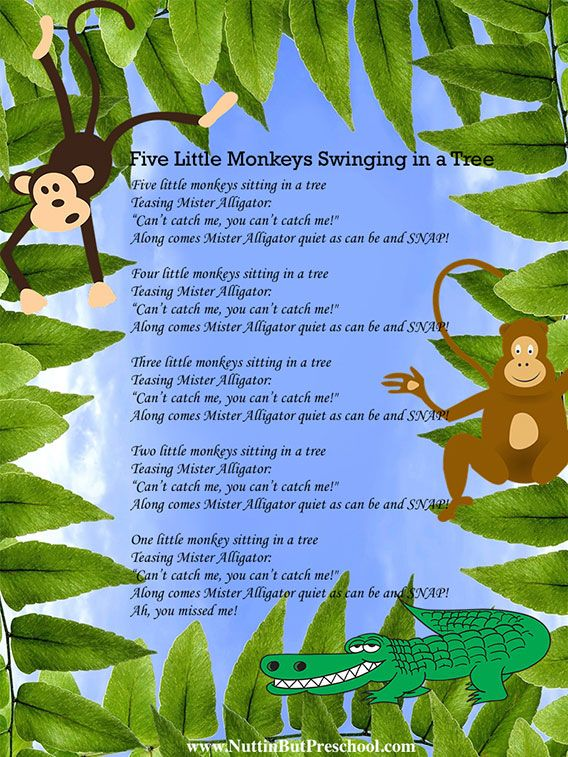 Save a copy of Five Little Monkeys Swinging in a Tree. Use the copy on phone or iPad to recall the words to songs & organize your preschool songs