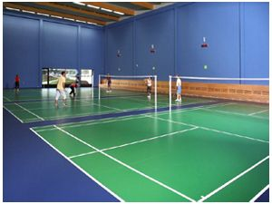 Pvc Badminton Court chandigarh